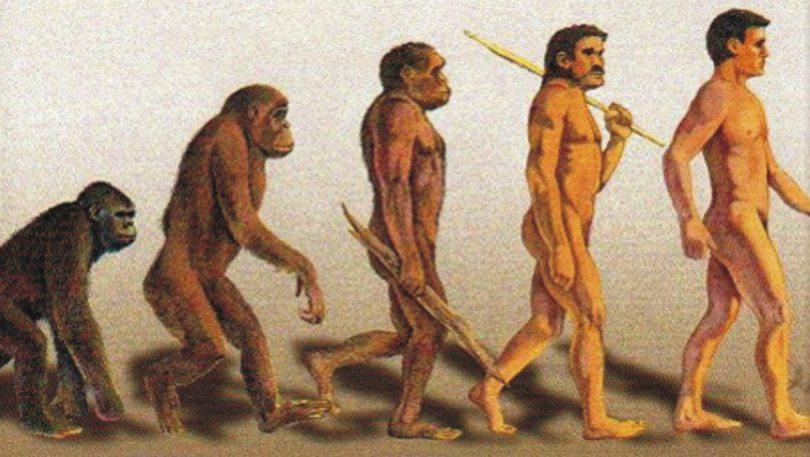 Γκρεκοπίθηκος: Έλληνας ο πρώτος άνθρωπος; 7,2 εκατ. ετών βρέθηκε σε Ελλάδα και Βουλγαρία