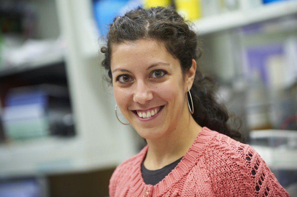 Μια Ελληνίδα γυναίκα της χρονιάς για το 2017 στην Ολλανδία – Η Δρ. Μαρία Θέμελη βραβεύτηκε για την έρευνα της για τον καρκίνο