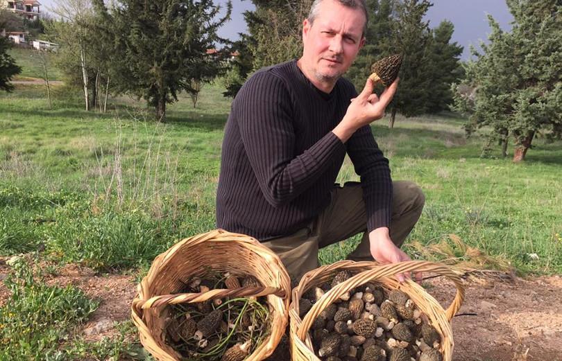 Made In Greece η Fungi Hellas & ο Νεκτάριος Φιλιππόπουλος: Ο «γκουρού» των άγριων μανιταριών & της τρούφας στην Ελλάδα
