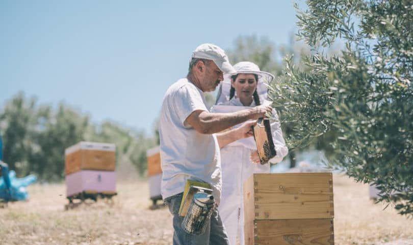 Αποκλειστικό – Made In Greece το μέλι Ermionis της Οικογένειας Μπαϊρακτάρη: Φυσικό & ανεπεξέργαστο με ελληνικά βότανα & ένα μοναδικό πατενταρισμένο μελόξυδο – Έκπληξη το Μουσείο Μελιού!
