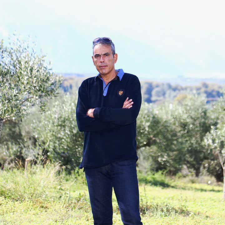 Sakellaropoulos Σακελλαρόπουλος ελαιώνες βιολογικά ελαιόλαδα ελιές organic farms olive oil