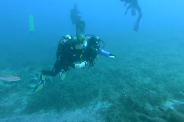 Αλόννησος: Γάλλοι δύΑλόννησος: Γάλλοι δύτες καταγράφουν το πρώτο υποβρύχιο μουσείο της Ελλάδας – Δείτε την μαγευτική υποθαλάσσια διαδρομήτες καταγράφουν το πρώτο υποβρύχιο μουσείο της Ελλάδας – Δείτε την μαγευτική υποθαλάσσια διαδρομή